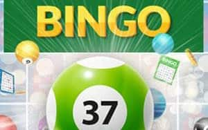 Bingo 37 Ticket